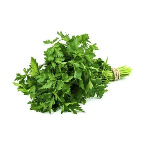 Yeşil Maydonoz (Adet) resmi