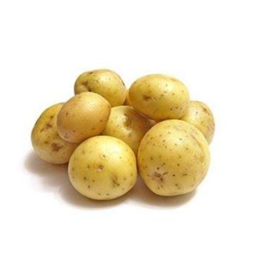 Taze Patates (Kılo) resmi