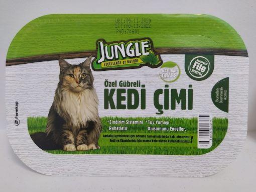Jungle Kedi Cimi resmi
