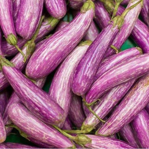 Patlıcan Ala resmi